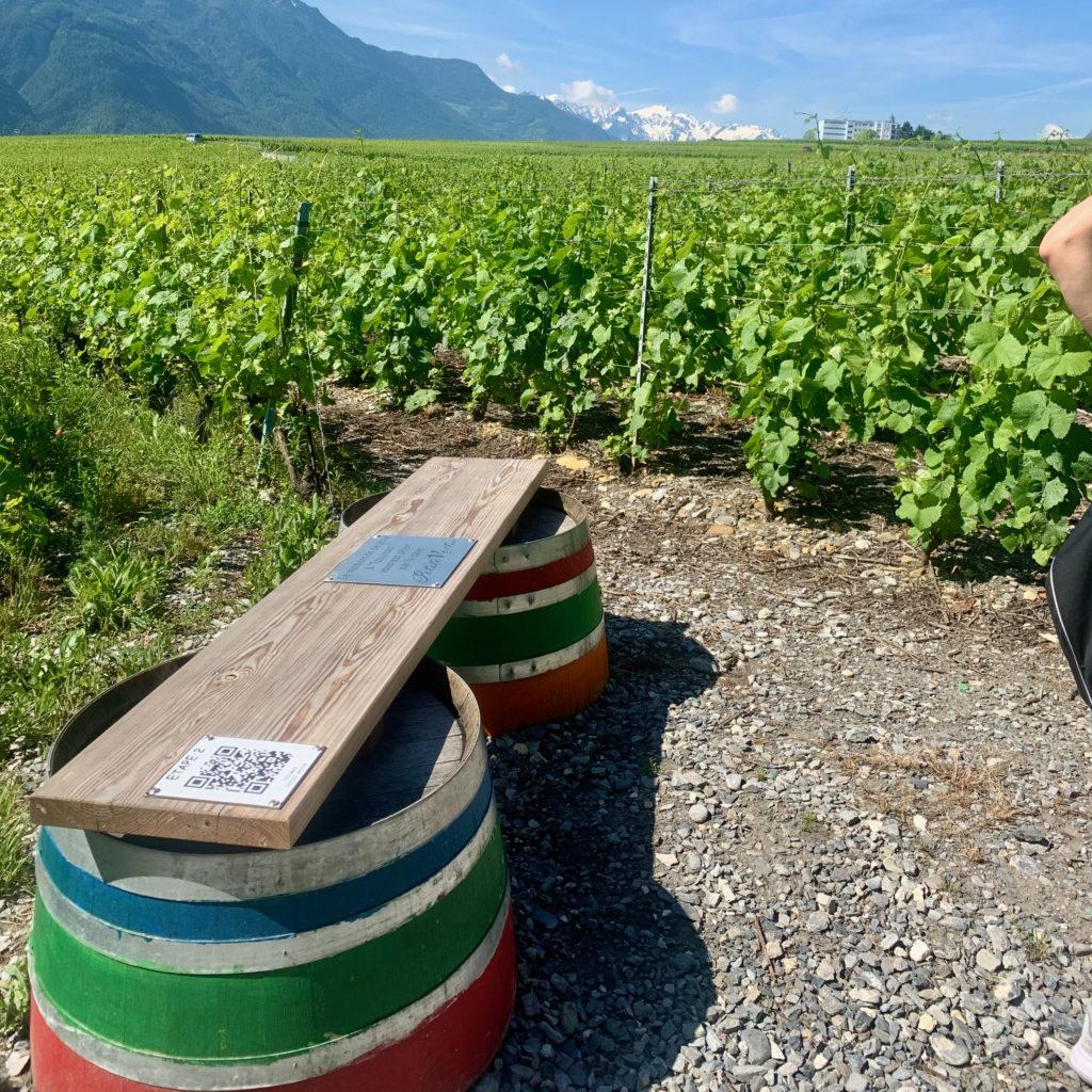 Digital signage on a wine trail